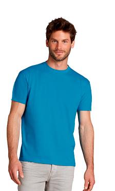 camiseta regent